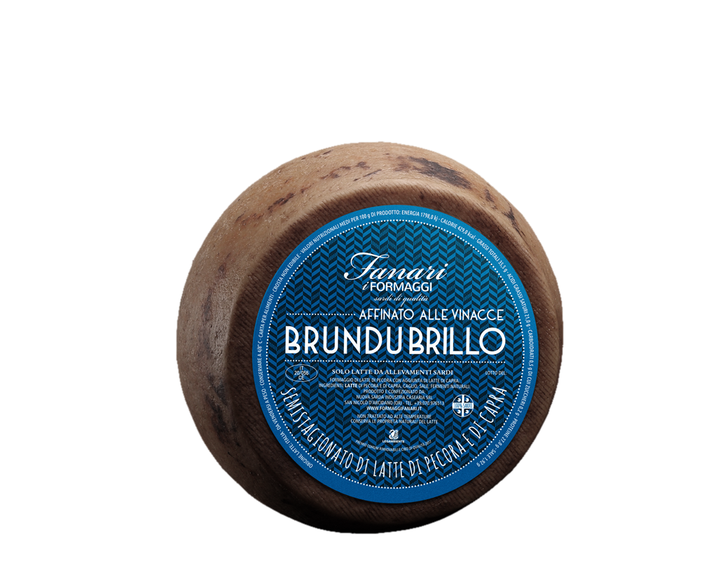 BRUNDU BRILLO